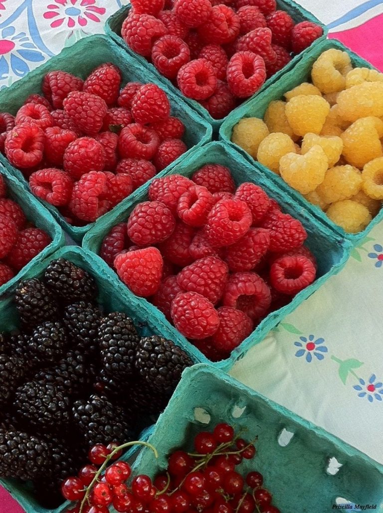 Market Special: Pudwill Berry Farms