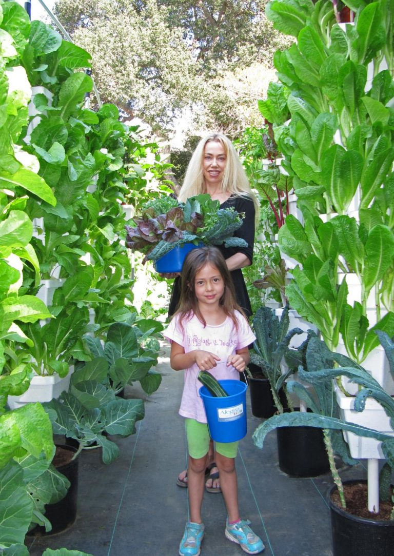 Alegria Fresh in Laguna Beach—Growing a Bumper Crop of Green Power