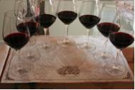 Wine Jargon: Wine Tasting Part I