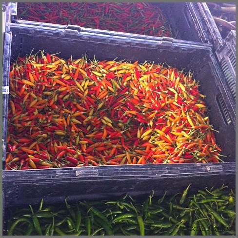 Farmers Market Special: Chiles are Hot