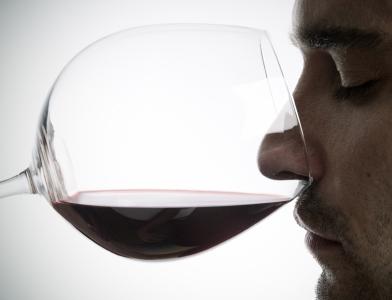 15 Pinot Noir Dictums