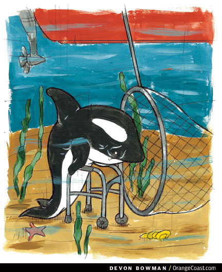 O.C. Answer Man: The first capture of a killer whale was in Newport Harbor?