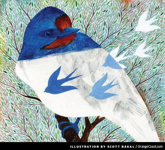 Rituals: The Swallows of Capistrano