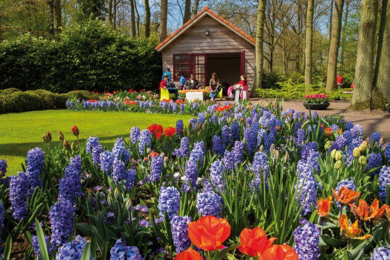 Travel: Spring Fling in Keukenhof Gardens, The Netherlands