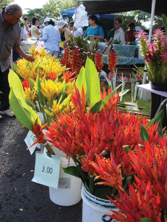 Farmers' Markets in Hawaii Promise a Fresh and Exotic Food Adventure