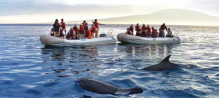 Kidding Around: Family Galápagos, Abercrombie & Kent