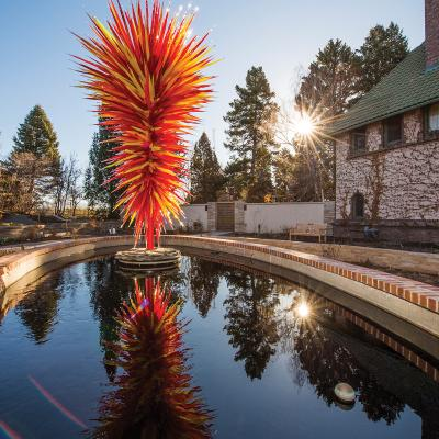 The Colorado sculpture by Dale Chihuly is a big draw at the Denver Botanic Gardens.