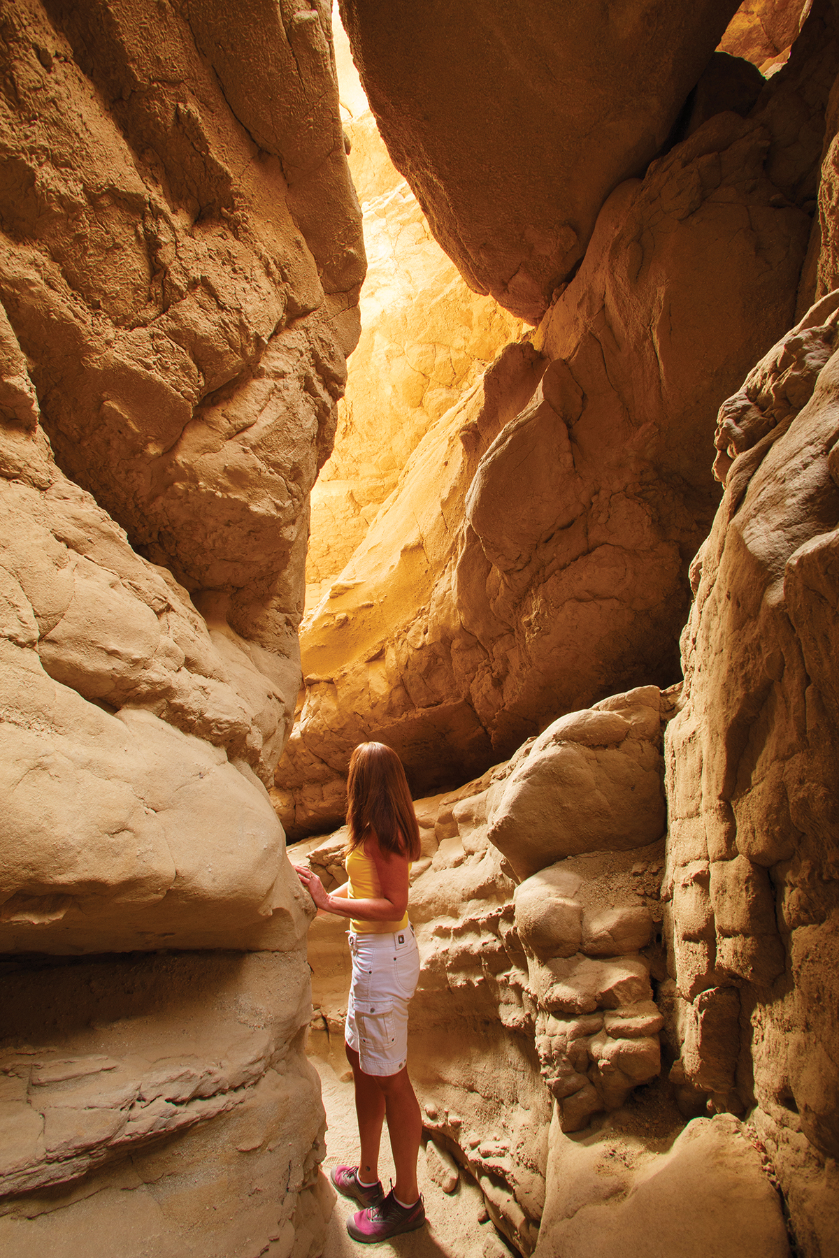 State Park Escapes Anza Borrego,Most Googled Question In Each State