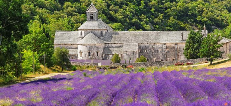 Times Journeys: Flavors of Provence