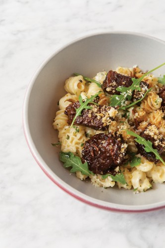 Tender short ribs over radiatore noodles