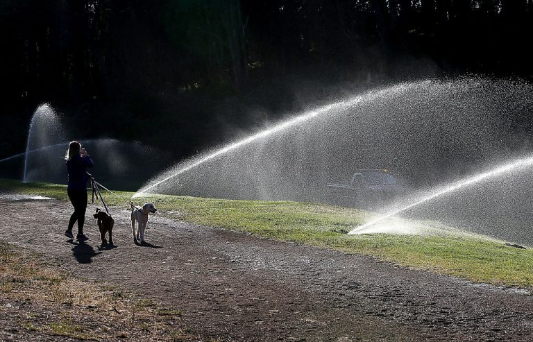 O.C. Answer Man: How's Orange County doing with water conservation?