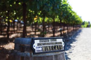 Newport Beach Vineyards & Winery