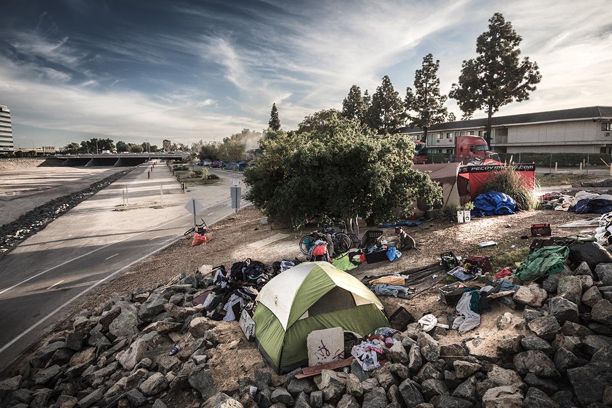 7 homeless grove
