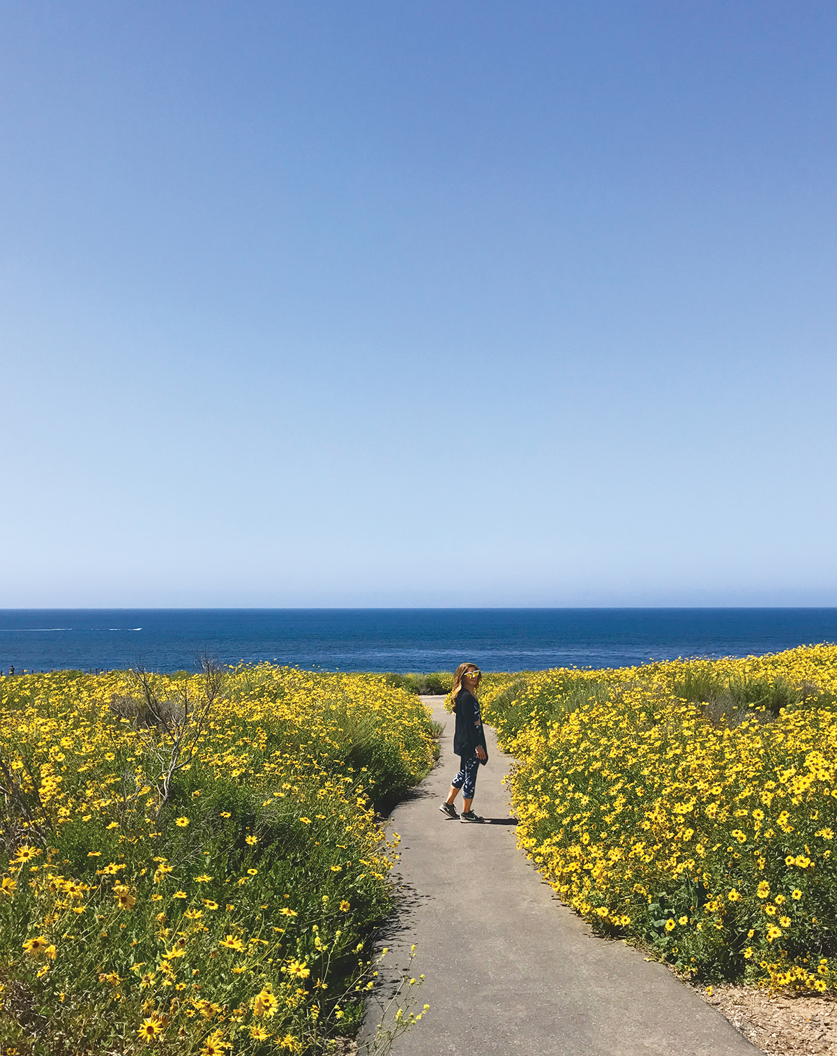 10 Orange County Hikes To Take You From Sea Summit