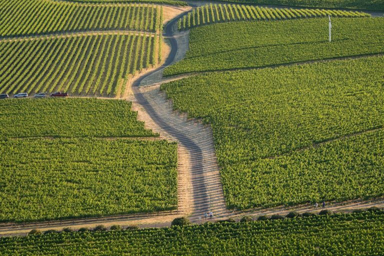 The Cakebread Family Stakes Claim on the Road Less Traveled – Mullan Road Cellars