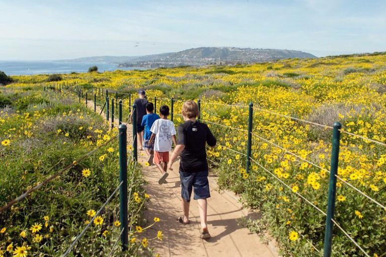 Kid-Friendly Hikes in Orange County