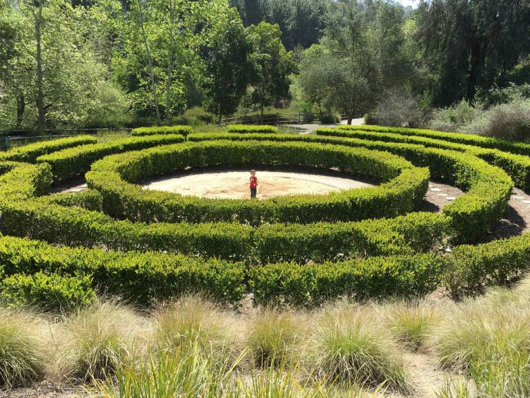 Visit This Hedge Maze in Mission Viejo