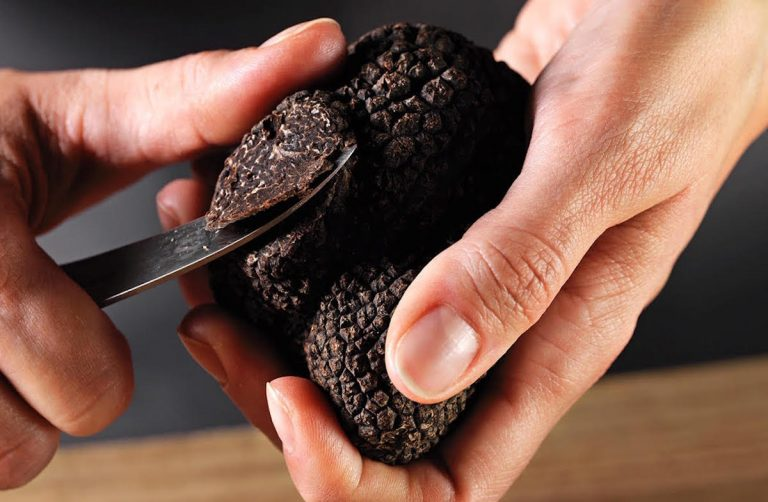 Knife Pleat to Serve 6-Course Black Truffle Experience on Wednesday