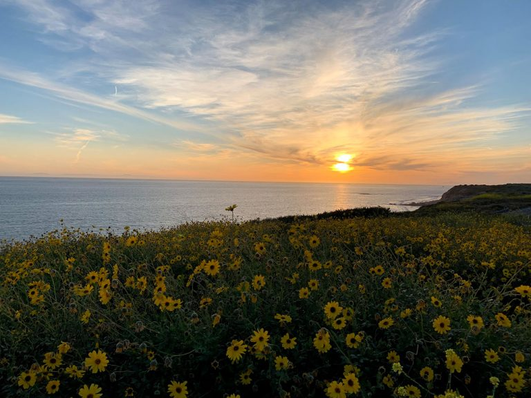A Guide to Hiking Crystal Cove