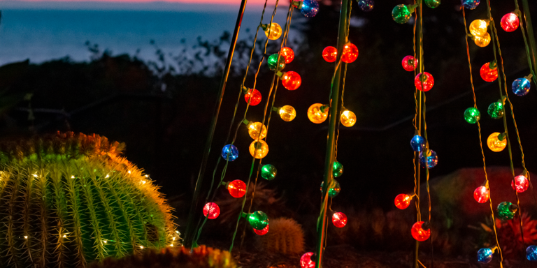 December O.C. Events: Holiday Lights, Walks, and More