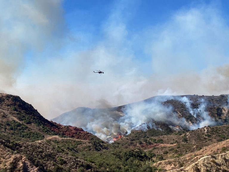 Irvine Ranch Conservancy's Dedication to Wildfire Prevention