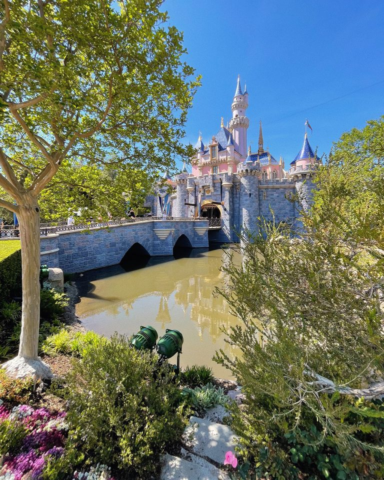 5 Changes Disneyland Made for Reopening and How to Best Prepare