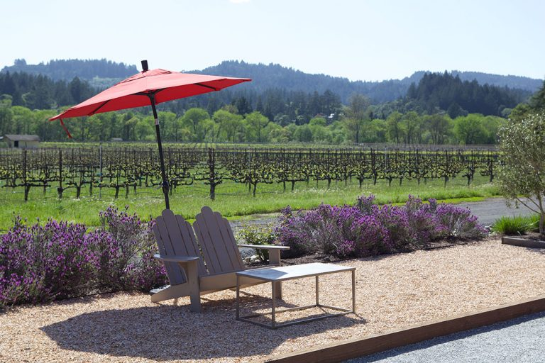 Travel Guide: Quaint and Charming Healdsburg in Sonoma County