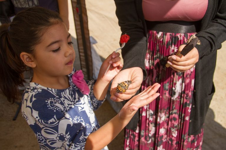 Mile Square Regional Park's Monarch Butterfly Day Returns August 14